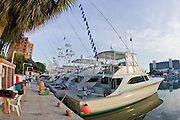 Outrigger halyard full of White Marlin release flags for this boat tied up med style in Marina Portofino, Venezuela.