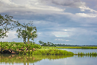 A stormy sky threatens a coastal Atlantic Salt marsh