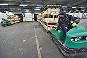 Nederland, Venlo, 27-1-2019 Op een bloemenveiling worden bestelde partijen in een vrachtwagen geladen om verder vervoerd te worden naar duitsland of een ander land in europa . Foto: Flip Franssen