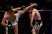 UFC 124 Fights