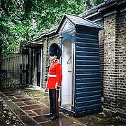 Una Guardia della Regina<br /> <br /> A Queen's Guard