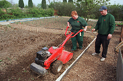 Woman with Downs Syndrome at work on community garden project with carer using rotavator,