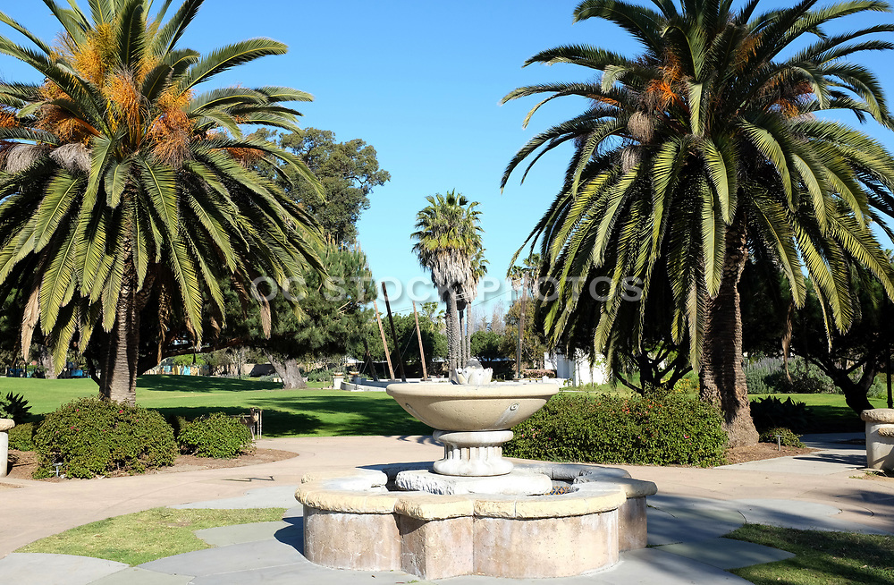 Chase Palm Park Fountain and Palm Trees
