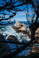 Crashing waves, rocky cliffs and unique forest along the beautiful California coast at Point Lobos State Natural Reserve in California