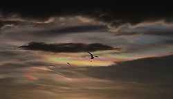 Iridescent clouds appear in the sky over Gateshead, Tyne and Wear.