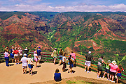 Visitors enjoying the view from Waimea Canyon Lookout, Island of Kauai, Hawaii