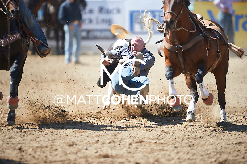 Steer wrestler Tom Lewis of Lehi, UT competes at the Redding Rodeo in Redding, CA<br /> <br /> <br /> UNEDITED LOW-RES PREVIEW<br /> <br /> <br /> File shown may be an unedited low resolution version used as a proof only. All prints are 100% guaranteed for quality. Sizes 8x10+ come with a version for personal social media. I am currently not selling downloads for commercial/brand use.