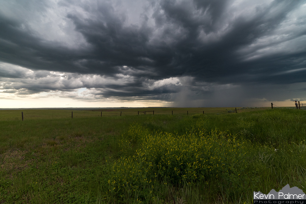 This isolated supercell formed near Miles City out ahead of the advancing MCS. It barely moved at all while slowly organizing and developing a wall cloud.
