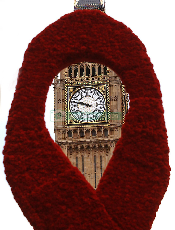 A giant red ribbon made from 6,000 carnation flowers stands in Parliament Square central London, where it is positioned as a reminder of World AIDS day this coming Saturday.