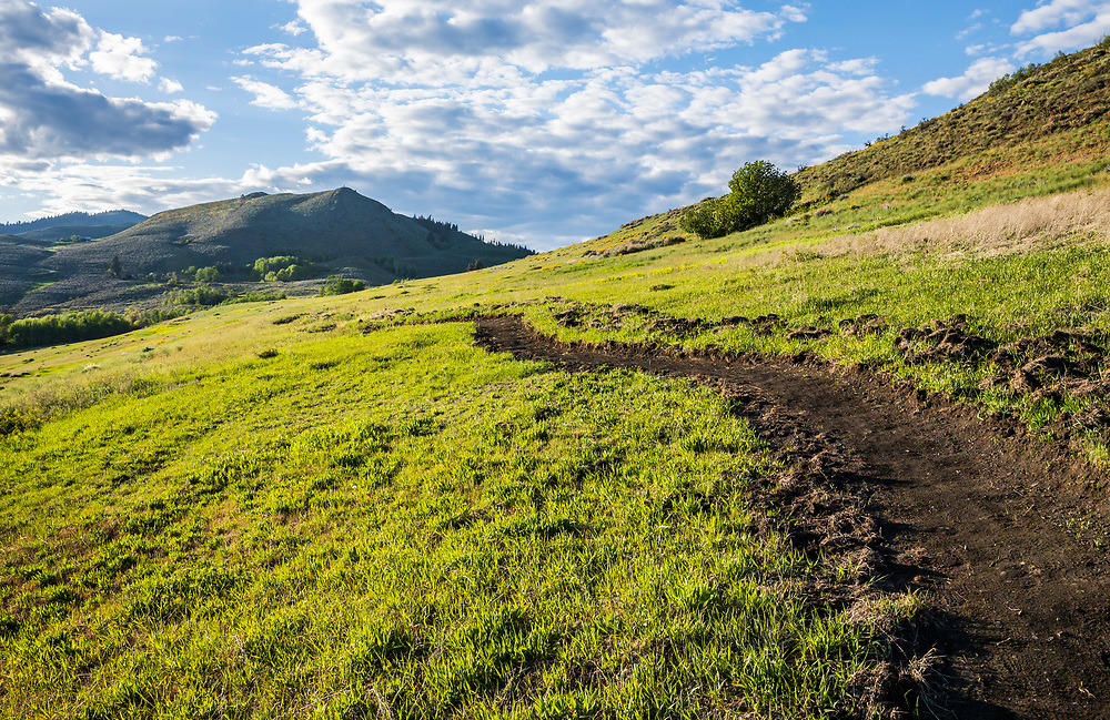 A newly dug trail on Lewis Butte outside Winthrop, Washington in the Methow Valley.