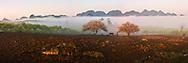 Vietnam Images-panoramic landscape-Spring-Moc Chau highland