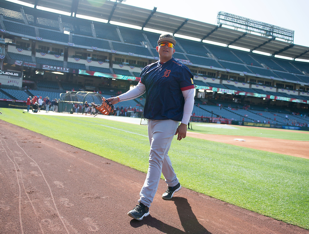 The Tigers' Miguel Cabrera heads to the dugout Monday at Angel Stadium.<br /> <br /> ///ADDITIONAL INFO:   <br /> <br /> angels.0531.kjs  ---  Photo by KEVIN SULLIVAN / Orange County Register  -- 5/30/16<br /> <br /> The Los Angeles Angels take on the Detroit Tigers Monday at Angel Stadium.
