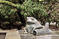 Bronze frog statue at Bellevue Botanical Gardens - desat