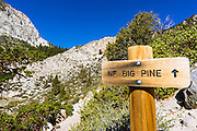 Trail sign on the North Fork of Big Pine Creek, Inyo National Forest, California USA