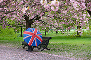 A man with a union jack umbrella sits on a bench under cherry blossom trees during rain and wet weather on April 30, 2018 in Greenwich Park in London, England.
