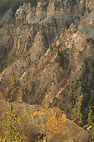 Colorful rhyolite cliffs of the Grand Canyon of the Yellowstone, Yellowstone National Park