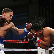 KISSIMMEE, FL - MARCH 06:  Jonathan Oquendo (L) lands a left hook to the head of Gabino Cota as they fight for the WBO Latino Flyweight Title during the Telemundo Boxeo boxing match at the Kissimmee Civic Center on March 6, 2015 in Kissimmee, Florida. Oquendo won the belt after a 10 round unanimous decision on the scorecards. (Photo by Alex Menendez/Getty Images) *** Local Caption *** Jonathan Oquendo; Gabino Cota