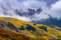 Clearing storm and peak fall color on Cimarron Ridge, Colorado, USA