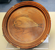 Plate with a painted fish. Roman, made at Aswan, Egypt, AD 400-500 The Aswan potteries produced fine wares in huge quantities from at least the 1st century AD until the 14th century. Some was exported, but most remained in Egypt.