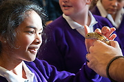 12/11/2018 Repro free: Galway Science and Technology Festival, the largest science event in Ireland, runs from 11-25 November featuring exciting talks, workshops and special events. Full programme at GalwayScience.ie. . Pupils from Our Lady's College and a leopard lizard from n from The Bug Doctors collection ( Dr Michel Dugon- NUI Galway) collection  . Photo:Andrew Downes, Xposure.