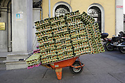 wheelbarrow loaded with eggs