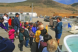 Guide Talking About Seals, The Marine Mammal Center