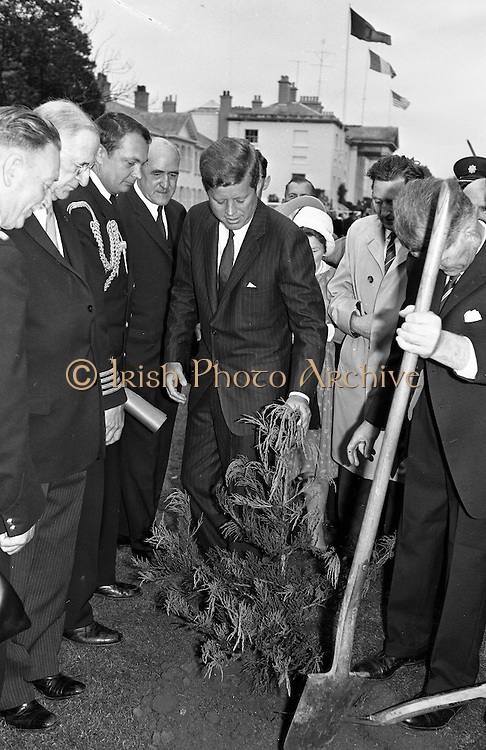 President John F. Kennedy attends a Garden Party at Aras an Uachtarain.  Kennedy plants a Californian Redwood in the grounds of the residence, watched by President de Valera and Mr. Frank Aiken, Minister for External Affairs (left)..27.06.1963. JFK visit to Ireland in 1963. photos john f kennedy, photos of john f kennedy,<br /> john f kennedy photos,<br /> jfk quotes, pictures of john kennedy,<br /> john kennedy pictures, images of jfk, jfk images, pictures john f kennedy,<br /> john f kennedy pictures,