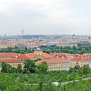 Panoramic shot of vineyard and park in the center of Prague, Grebovce