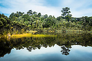 Lake Wilkie reflecting in the Catlins, New Zealand