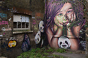 Graffiti and urban artwork that features pandas and a child's face, on 20th January 2020, in Croydon, London, England.