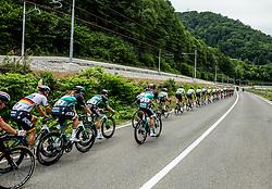 Peloton near Lasko  during 1st Stage of 26th Tour of Slovenia 2019 cycling race between Ljubljana and Rogaska Slatina (171 km), on June 19, 2019 in  Slovenia. Photo by Vid Ponikvar / Sportida