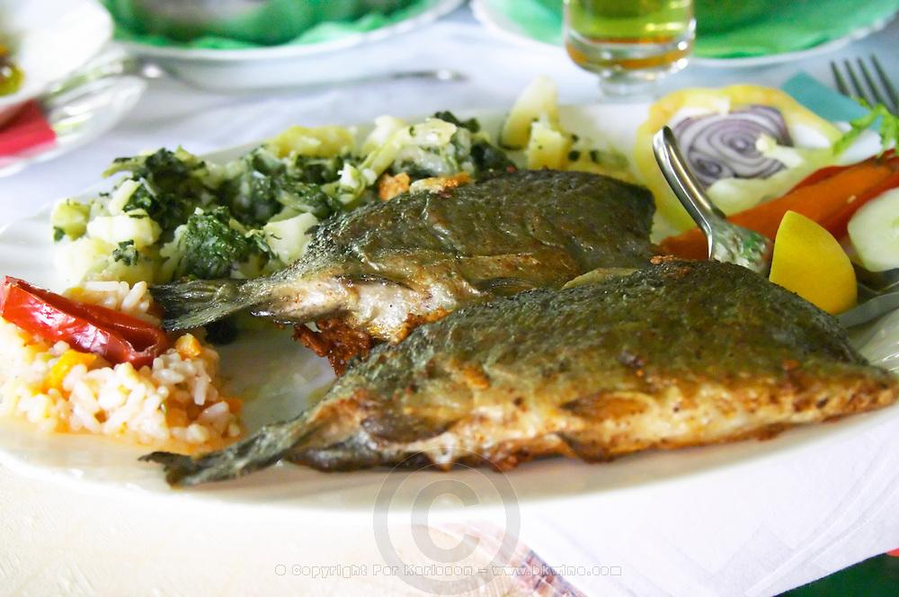 In a restaurant in Trebinje: fried fish trout with potato, onion and herb salad. Trebinje. Republika Srpska. Bosnia Herzegovina, Europe.