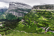 Logan Pass Trail at Glacier National Park