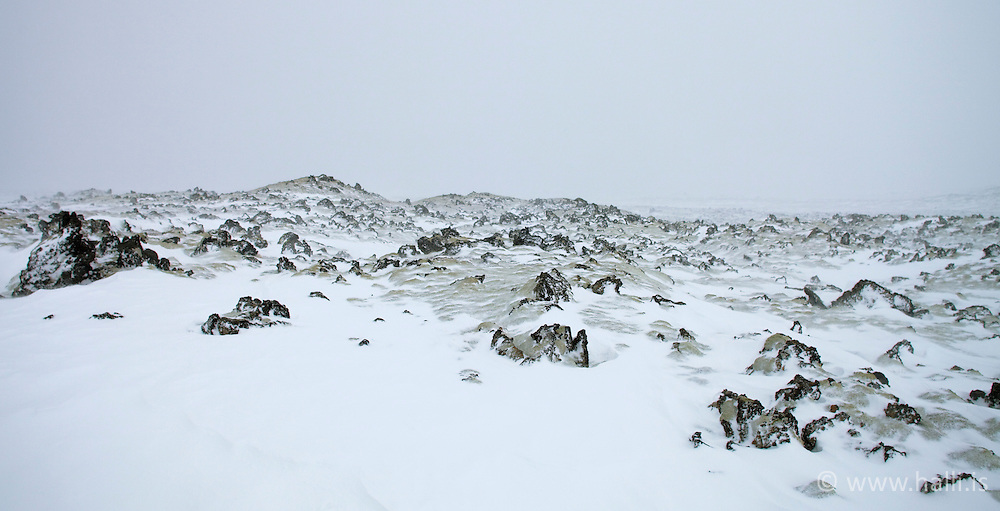 Moss and lava, covered in snow, Snaefellsnes, Iceland - Mosi og hraun í snjó á Snæfellsnesi