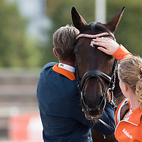 Grade IV - Individual Competition - FEI European Para Dressage Championships 2015 - Deauville