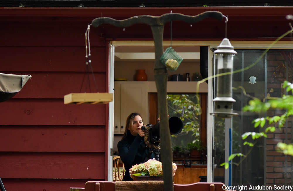 Melissa Groo photographs birds at her home in Brooktondale, N.Y., Sunday, September 30, 2018. <br /> (Photo by Heather Ainsworth)