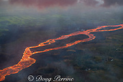 aerial view of lava river, emanating from fissure 8 in the east rift zone of Kilauea Volcano, near Pahoa, flowing as a river of lava through the countryside toward Kapoho, lower Puna District, Hawaii ( the Big Island ), Hawaiian Islands, U.S.A.