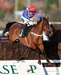 Shintori ridden by jockey Aidan Coleman jumps a fence during the Strong Flavours Catering Novices Handicap Chase during Injured Jockeys Fund Charity Raceday at Plumpton Racecourse.