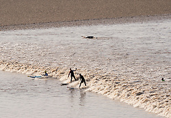 © Licensed to London News Pictures; 30/03/2021; Newnham, Gloucestershire, UK. Surfers ride the Severn Bore, a tidal surge on the river Severn which has the second largest ideal range in the world. Covid coronavirus restrictions have been party lifted to allow outdoor sports and meeting up to six people outside with social distancing. Photo credit: Simon Chapman/LNP.