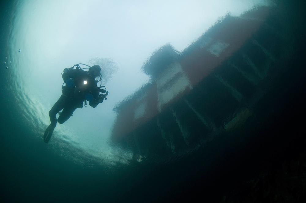Under the house, Klas Malmberg, Atlantic marine life, Saltstraumen, Bodö, Norway<br /> Model release by photographer