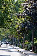 Street views of the neighborhood near the University of Toronto known as The Annex