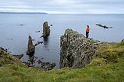 Rock formations in Löngufjörur / Skjólfjörur beach in Vopnafjordur - east Iceland.