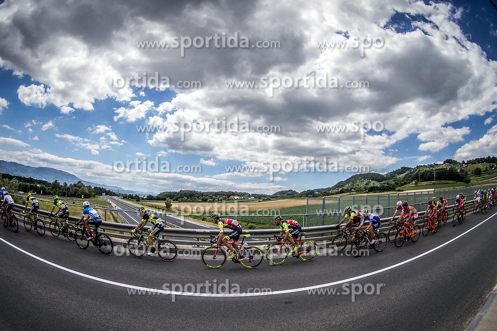 Peloton in Kronovo during last Stage 4 of 24th Tour of Slovenia 2017 / Tour de Slovenie from Rogaska Slatina to Novo mesto (158,2 km) cycling race on June 18, 2017 in Slovenia. Photo by Vid Ponikvar / Sportida