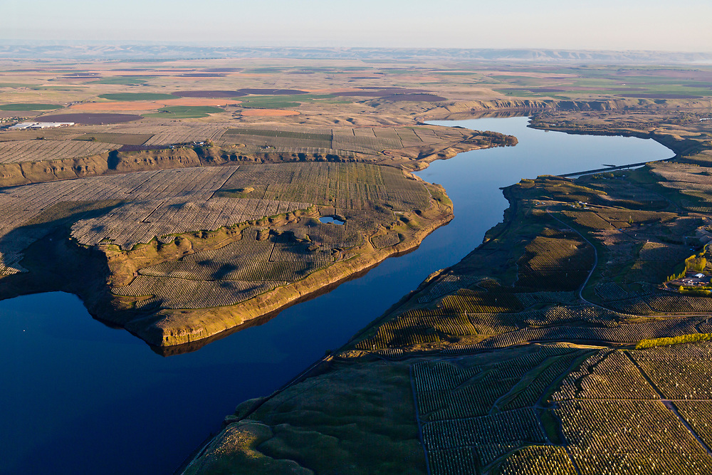 Aerial view of orchards, vineyards, and crop circles from center pivot irrigation systems along the Snake River just before it joins the Columbia River at Tri-Cities, Washington.<br /> (Kennewick, Pasco, and Richland) Licensing - Open Edition Prints