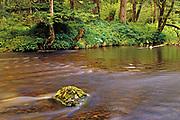 Stream<br />Diana Lake Provincial Park<br />British Columbia<br />Canada