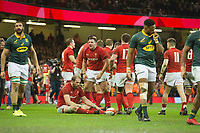 Rugby Union - 2017 Under Armour Series (Autumn Internationals) - Wales vs. South Africa<br /> <br /> Alun Wyn Jones (Captain) of Wales sits calmly on the turf after the final whistle , at The Principality Stadium (Millennium Stadium), Cardiff.<br /> <br /> COLORSPORT/WINSTON BYNORTH