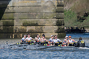 Mortlake/Chiswick, GREATER LONDON. United Kingdom. Tideway Scullers School, W.MasB.8+. competing in the 2017 Vesta Veterans Head of the River Race, The Championship Course, Putney to Mortlake on the River Thames.<br /> <br /> <br /> Sunday  26/03/2017<br /> <br /> [Mandatory Credit; Peter SPURRIER/Intersport Images]