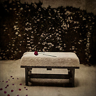 """A broken rose depicts what here? A broken heart? This image is from Robert Dodge """"Project: 14th and U Streets,"""" a look at the center of town in Washington, D.C."""