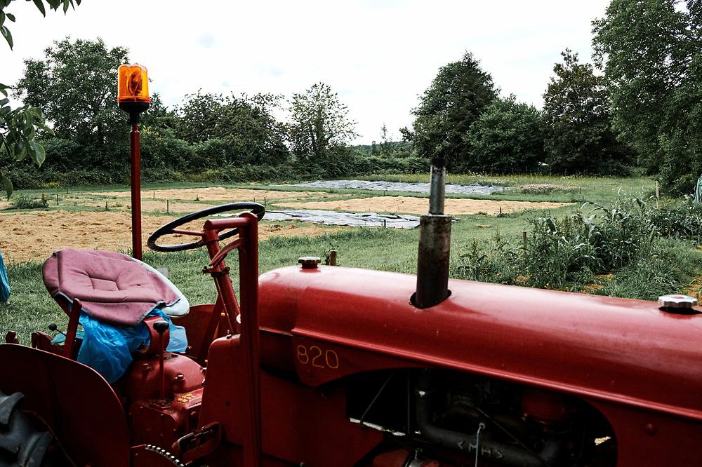 An antic tractor in Marie Meunier's vegetable garden. Saint-Pierre-de-Frugie, France. July 12, 2019.