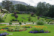 Formal Flower Gardens (4 on the map) with annual bedding plants in the Victorian tradition in the Flower Garden area of The Victorian Walled Garden at Kylemore Abbey. Plants include: Calendula - Pot marigold, Lobelia, Tropaeolum - Nasturtium and Cannas. Only plants and flowers that were introduced to Ireland before 1901 are used in the gardens. The 6 acre garden is to the west of the Abbey originally known as a castle when it was built by Mitchell and Margaret Henry in the 1850's. The garden is on a south slope at the foot of Duchruach Mountain and facing Diamond Hill. It was chosen as the warmest and brightest spot on the estate with a mountain stream providing water. It is now a Benedictine community; open seven days a week all year round. The Abbey is located in Connemara in the west of Ireland. August